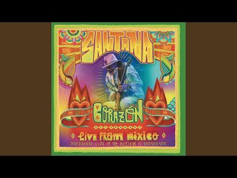 Iron Lion Zion (Live)