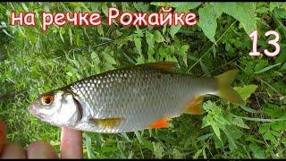 Рыбалка на маленькой речке на поплавок часть 13, ловля на течении и в затишке, съёмка под водой Fish
