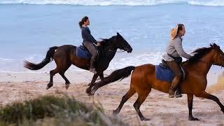 Cavalls Promo