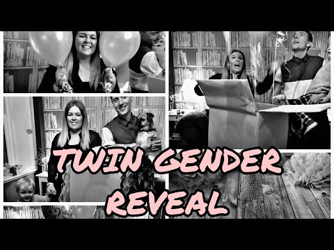 TWIN GENDER REVEAL | PREGNANT AFTER INFERTILITY | CLOMID PREGNANCY