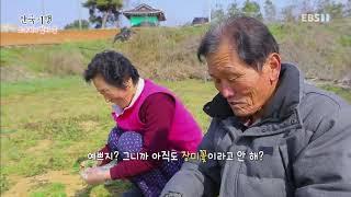 한국기행 - Korea travel_소쿠리에 담아 봄 5부- 당신만을 바라 봄_#001