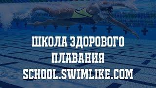 Как и где научиться плавать? Обучение плаванию взрослых в Москве!