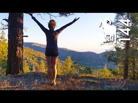 LEAVING CALIFORNIA | Steep Life 144
