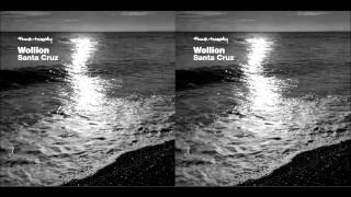 Wollion - Santa Cruz (Original Mix)