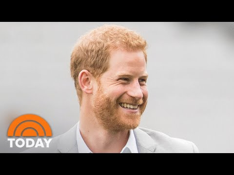 Prince Harry Lands Silicon Valley Tech Job   TODAY