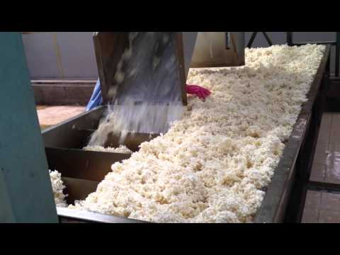 production of natural rubber latex​​​ part3