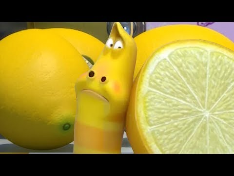 LARVA - YELLOWS LEMON STAND | Larva 2018 | Cartoons For Children | Larva Cartoon | LARVA Official