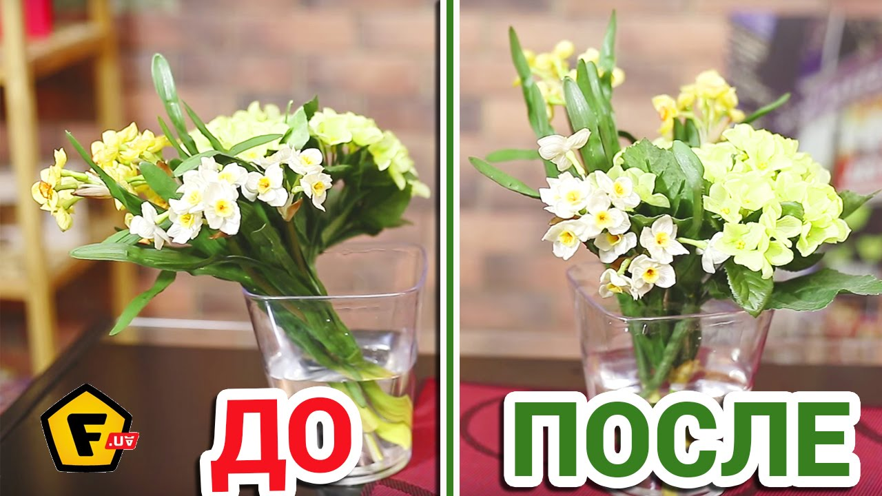 Вазы для цветов купить по низким ценам в интернет-магазине «emdesign». Доставка!. Телефон в москве: +7 (495) 407-05-29.