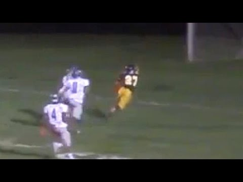 A must see dive and catch