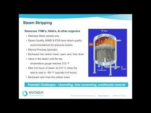 Evoqua Presents Granular Activated Carbon – Sanitization and Steam Stripping Webina