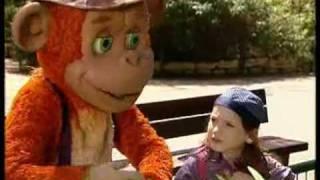 קופיקו: קופיקו לא יודע אם הוא קוף או בן אדם