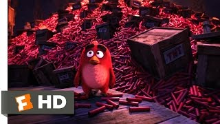 Angry Birds - A Dynamite Defeat Scene (10/10) | Movieclips