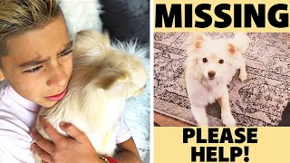 WE FOUND a MISSING PUPPY! **WE CAN'T BELIEVE IT** | The Royalty Family