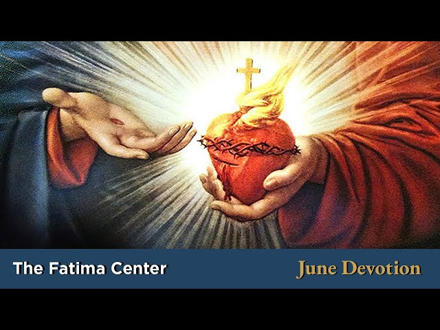 June Devotion: Sacred Heart | Monthly Devotions with Fr. Shannon Collins