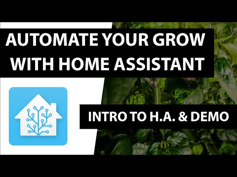 Automate Your Grow without Breaking the Bank - Intro to Home Assistant & Demo