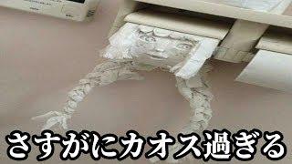 最近のコンビニのトイレがツッコミどころ満載だったwww【珍百景・看板】
