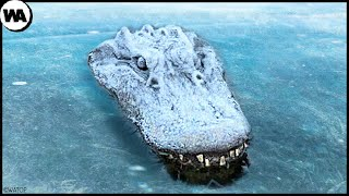 Never Pull a Fr๐zen Crocodile Out of Ice