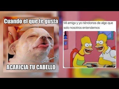 Memes Geniales De