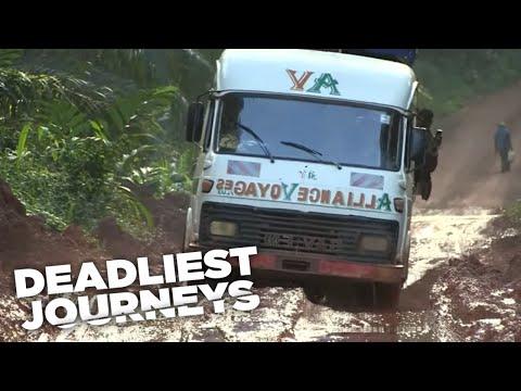 Deadliest Journeys - Cameroon, Birds and Lizards