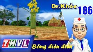 THVL | Dr. Khỏe – Tập 186: Bông điên điển - Phần 1