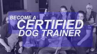 Dog Training School - Dog Training Certification Courses