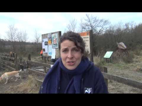The Wildlife Trust of South and West Wales - a social enterprise case study