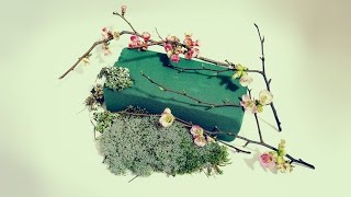 Флористика Как пользоваться флористической пеной Оазис (Мастер класс)Flower Floral Foam.