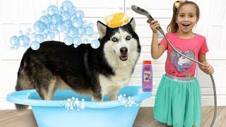 صوفيا تستحم الكلب