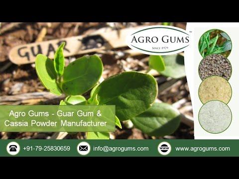 Health Benefits of Guar Gum by www.agrogums.com
