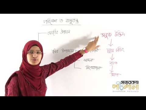01. General Discussion on Environment and Ecosystem | পরিবেশ