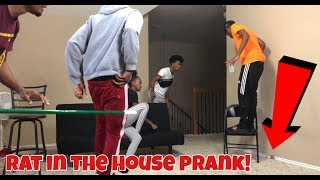 Baixar RAT IN THE HOUSE PRANK!!!