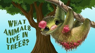 Video for Kids about Animals that live in trees -   Animal Sounds and Names