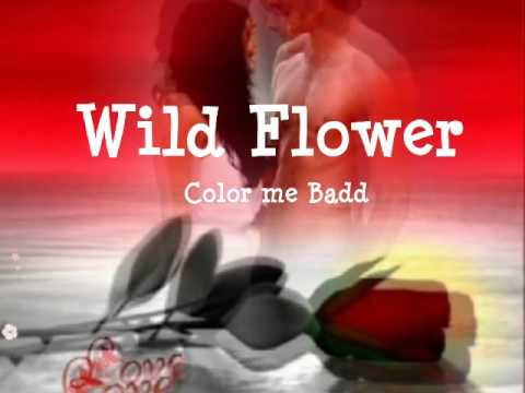 Wild Flower lyrics by Color Me Badd