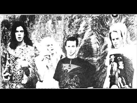 Butthole Surfers - Mark Says Alright mp3