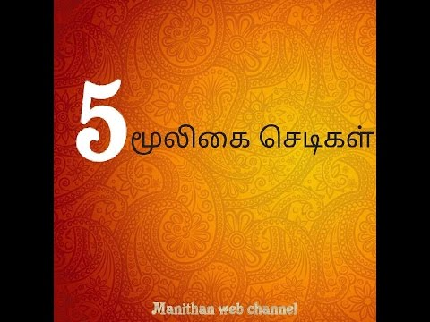 வீட்டில் இருக்க வேண்டிய மூலிகை செடிகள் | Tamil medicinal plants