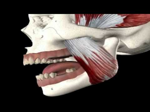 Pain in the Jaw:  Symptoms & Treatment