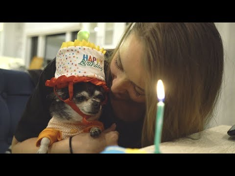 mr. marbles 10th birthday