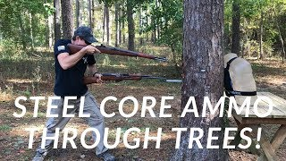 Shooting Through Trees with Steel Core Ammo!