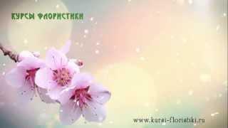 Курсы флористики. Цветок сакуры. Отзывы. Елена Почковская(, 2014-05-26T07:42:41.000Z)