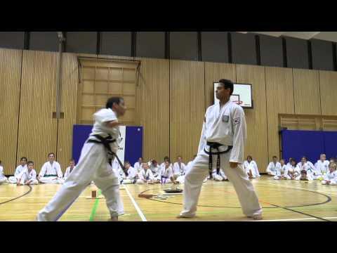 2013 BT Weihnachtslehrgang Taekwondo Blackbelt Stuttgart
