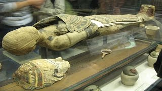 25 Intriguing Facts About Mummies That Might Leave You A Bit Surprised