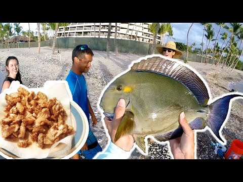 Catch And Cook / Largest Palani Of My Life! / Hawaii Surf Fishing Catch Clean Cook S3.E5