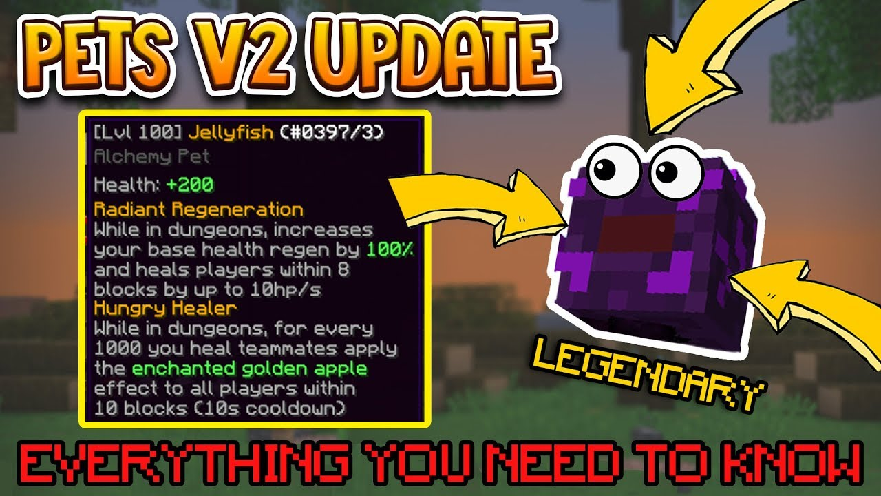Hypixel Skyblock Pets V2 Update Everything You Need To Know Youtube
