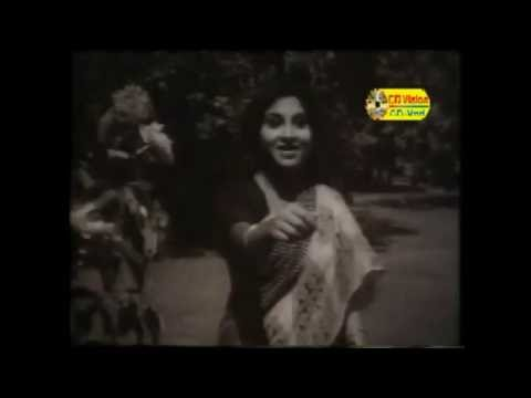 Ami Tomar Duti | Noyoner Alo (2016) | Full HD Movie Song | Suborna | Kajori | CD Vision