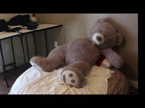 the teddy bros in cleaning the house (old vid)