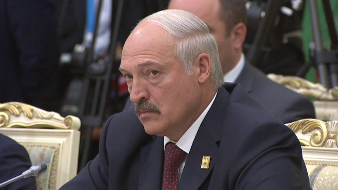 Начало заседания Высшего Евразийского экономического совета в расширенном составе