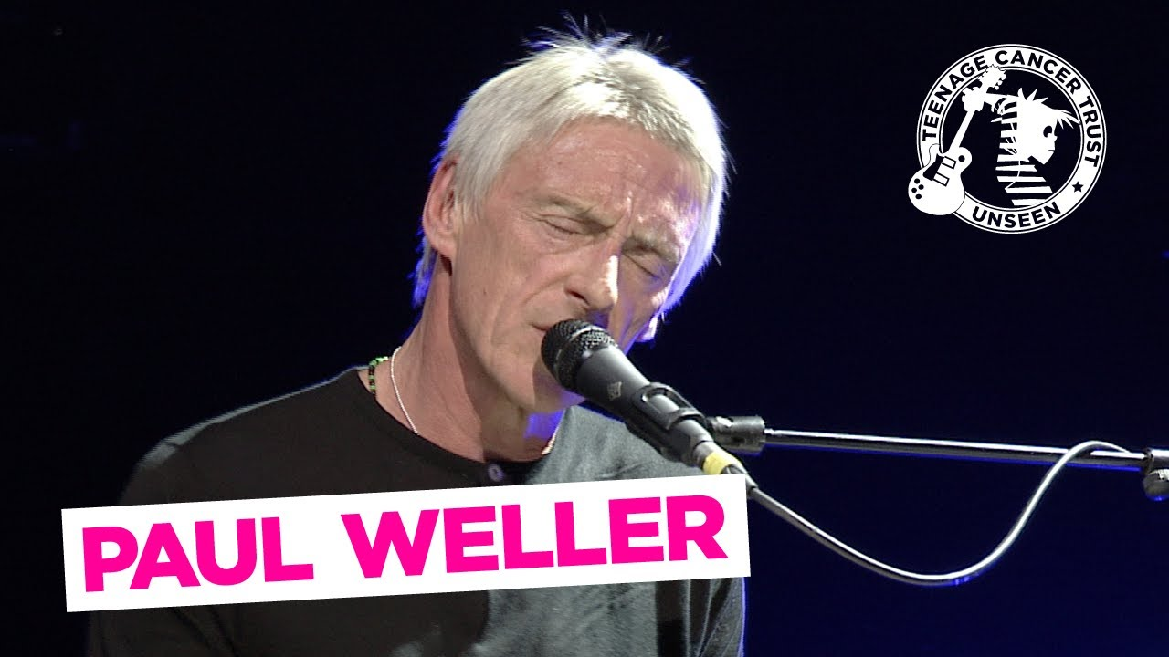 The Cranes Are Back - Paul Weller Live