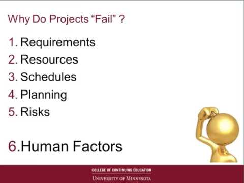 Webinar: Business Analyst Role in Troubled Project Recovery