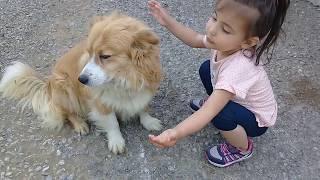 Eflin Fatih Selim in köpeğini çok sevdi