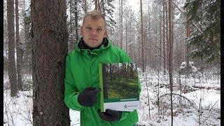 Купил лес в Финляндии. 15 ГЕКТАР своей ЗЕМЛИ.